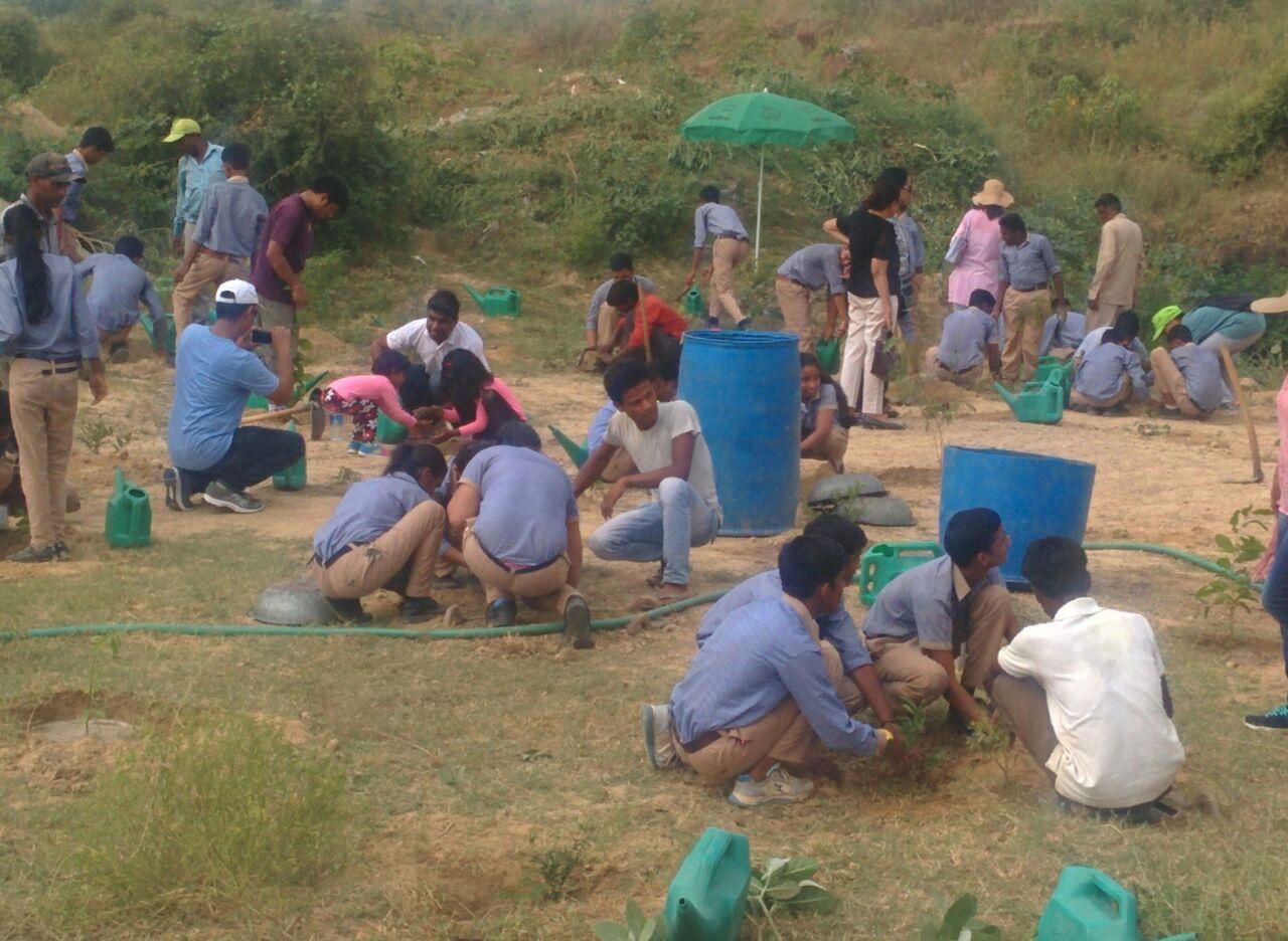 Plantation drive at Aravali Bio diversity Park