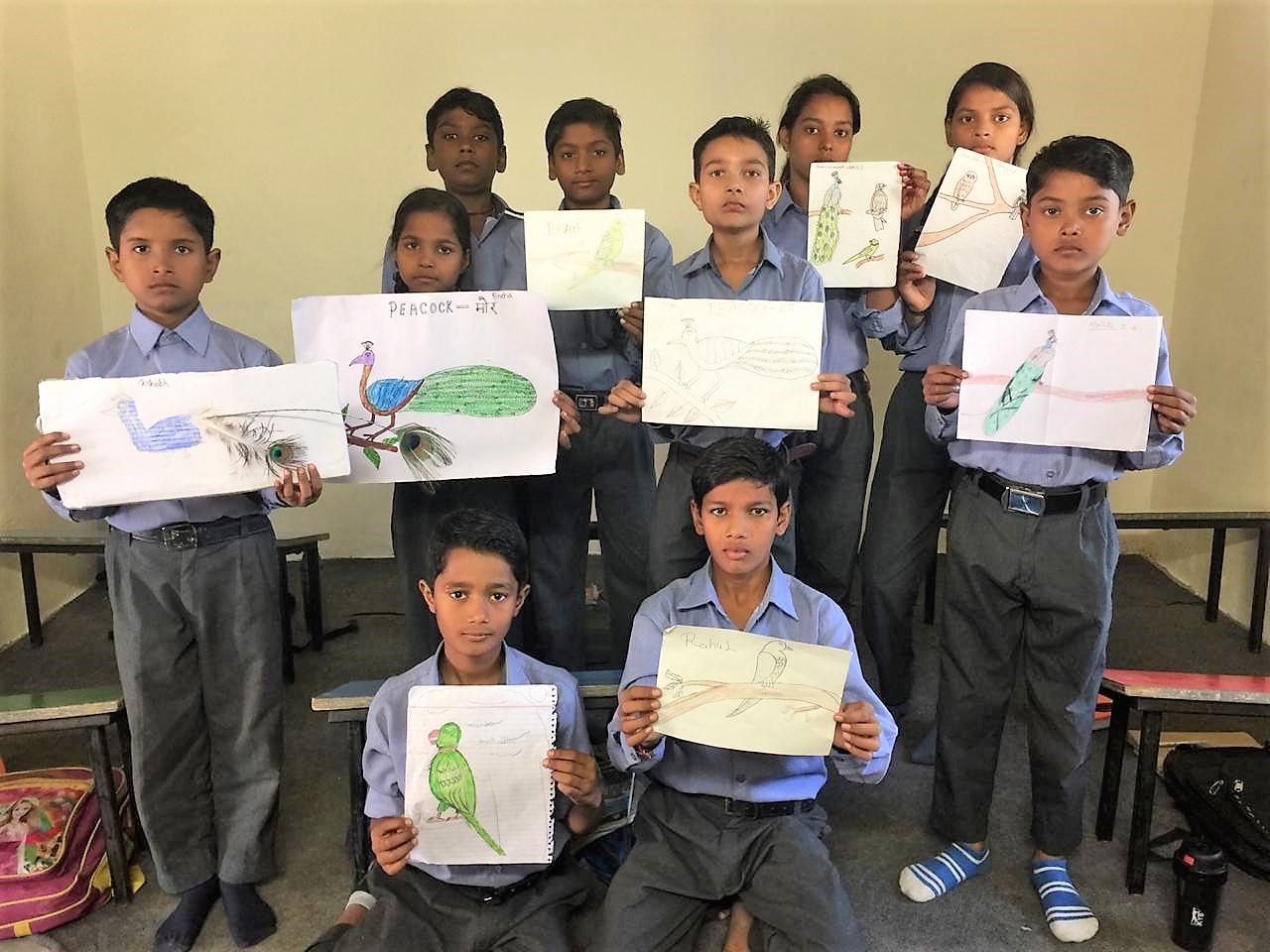 sketch drawings of birds -grade 3 students